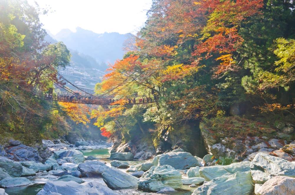 Iya Tal in Tokushima